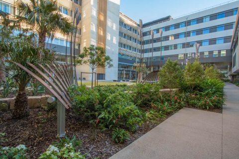 Sunshine Coast University Hospital Main Courtyard