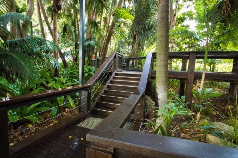 South Bank Rainforest Walk