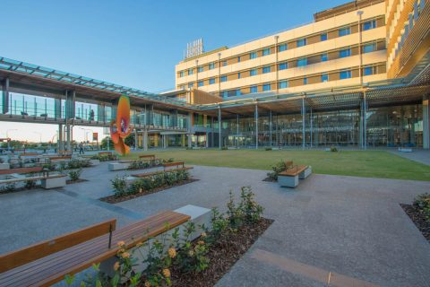 Sunshine Coast University Hospital Main Courtyard Landscape Queensland Award Winner 2017