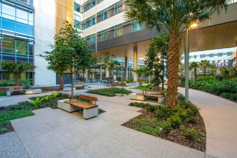Sunshine Coast University Hospital Main Courtyard